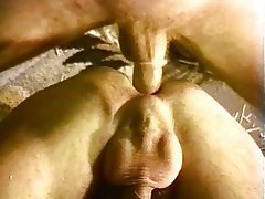 Anal, Bisexual, Hairy, Facial, Threesome